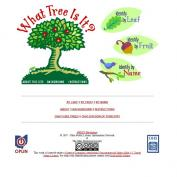 Ohio tree identification guide